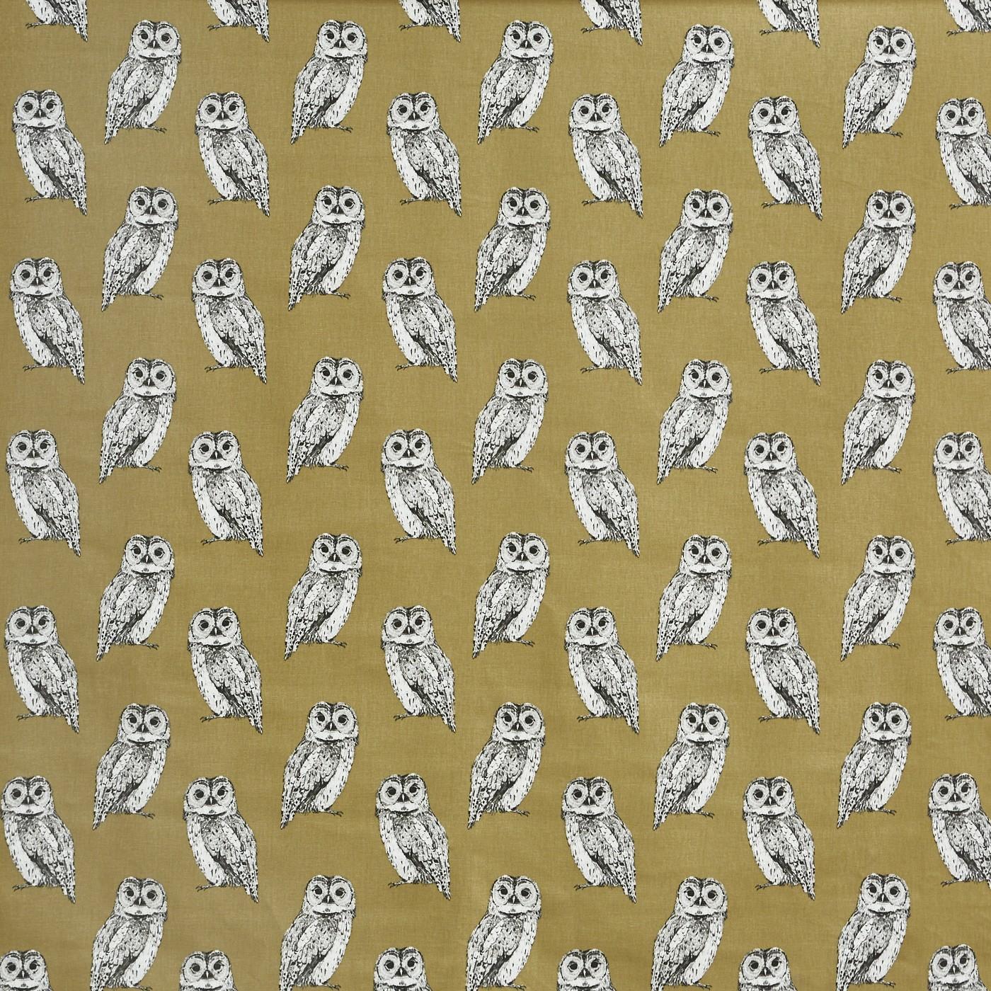 Owl Tawny