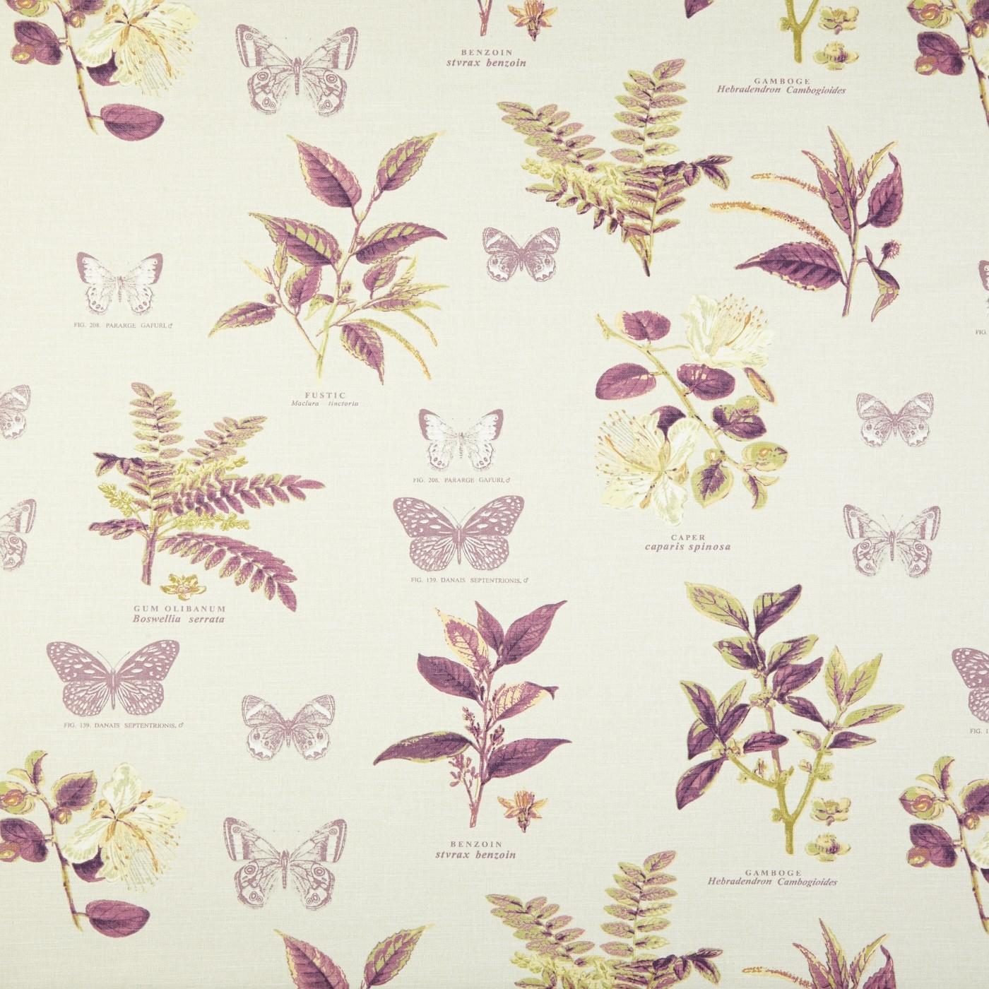 Botany Vintage