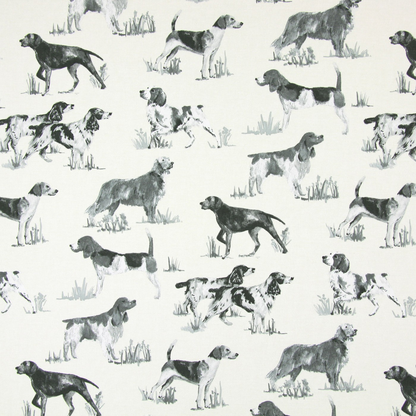 Hounds Charcoal