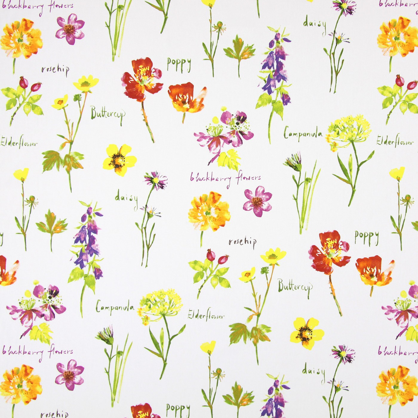 Wild Flowers Watercolour