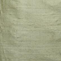 Jaipur Eucalyptus
