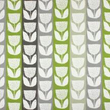 Dandelion Eucalyptus